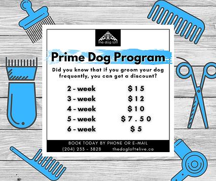 Prime Dog Program.png