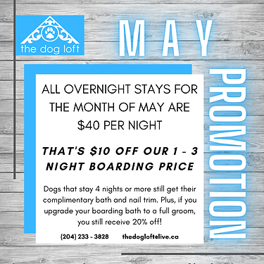 May events _ promos etc...png