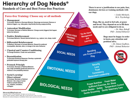 The Hierarchy of Dog Needs