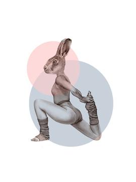 Gym Bunny white.jpg