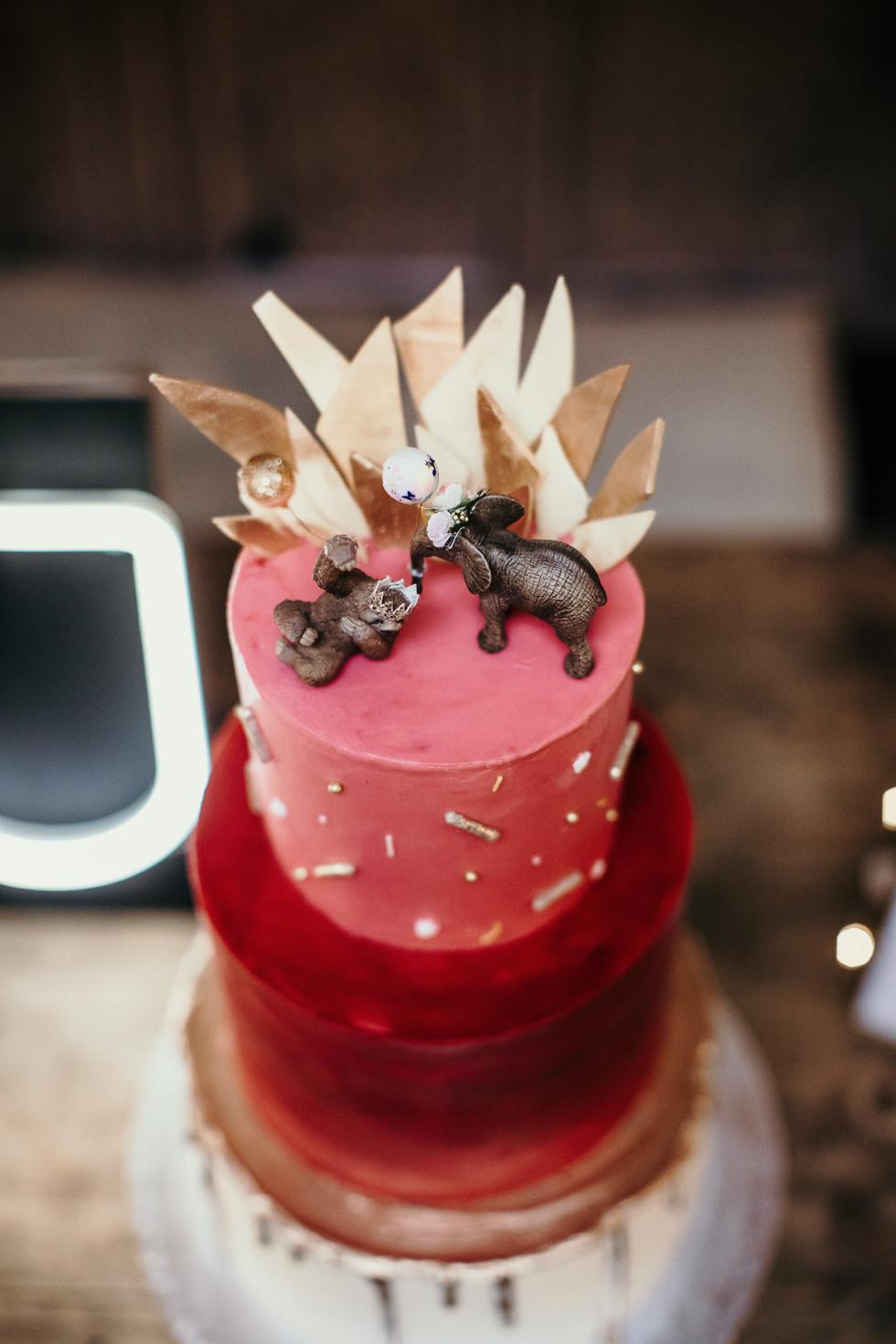 pink alternative wedding cake