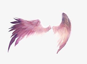 szárnyak_v1.png