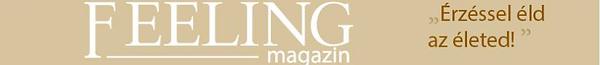 Feeling magazin.png