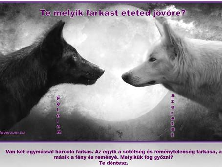 Farkas döntés