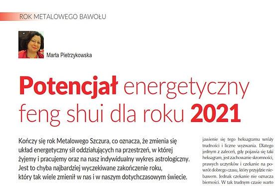 4Wymiar_cover_2021_styczen_Rok2021_FengS