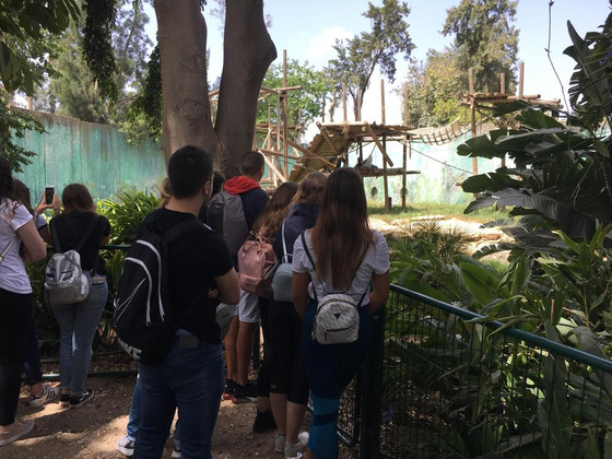 ביקור מגמת הביולוגיה בסיור  בסאפארי