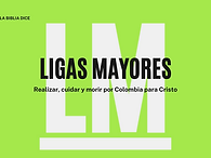 ligas-mayores.png