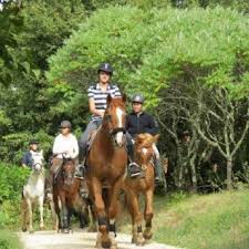 centre equestre à 10 km