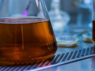 Controle de qualidade na cerveja: Analisar só quando há problema?