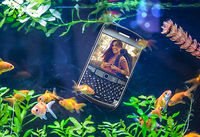 Smart Phone in Aquarium