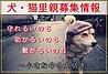 犬のしつけブログ
