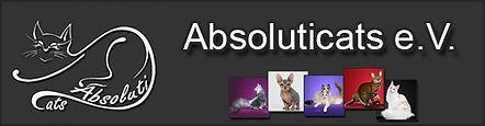 banner_absoluticats.jpg