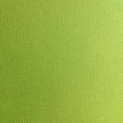 Cardstock Vert clair 30,5x30,5 cm 216gr