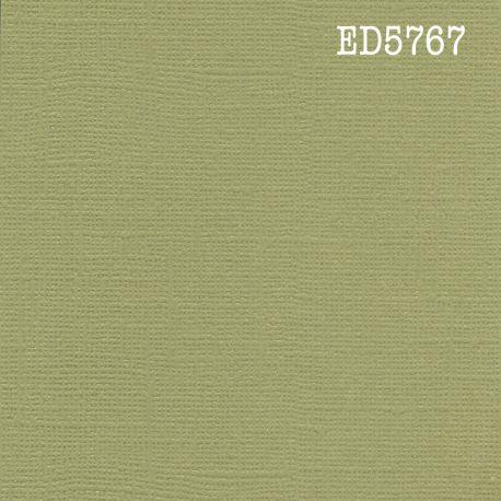 Cardstock Kaki 30,5x30,5 cm 216gr
