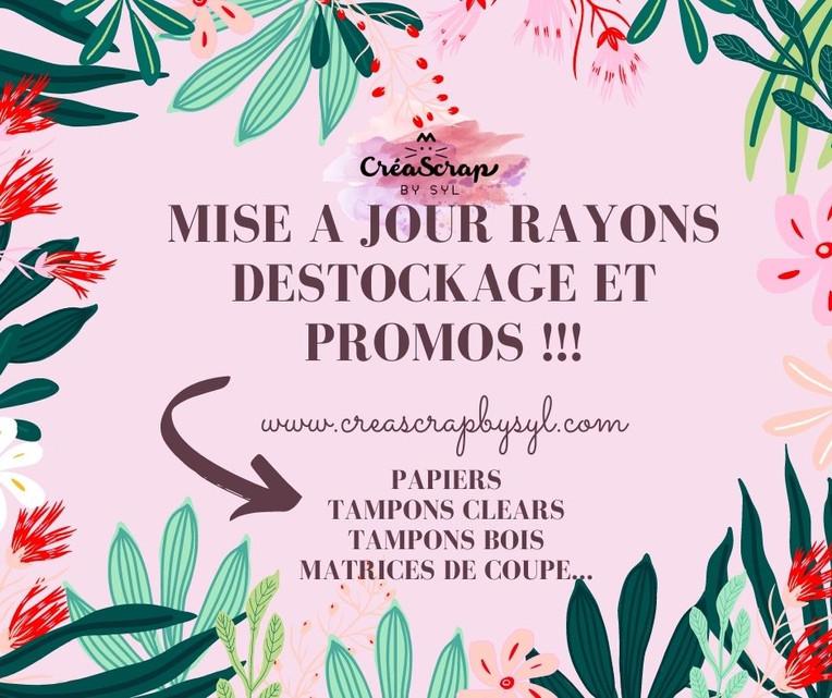 Turquoise Vert Rose et Rouge Tropical Floral Illustration Fête des mères Facebook Publicat