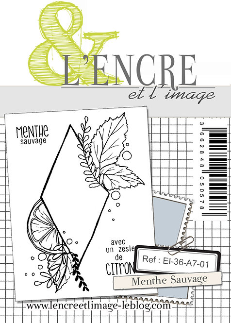 Tampons clears Menthe Sauvage  - L'Encre et l'Image
