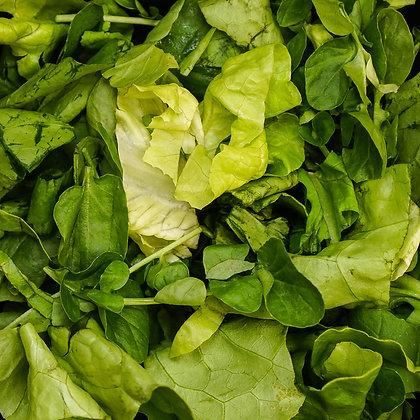 Mix de Folhas - Alface, Rúcula e Agrião (100g)