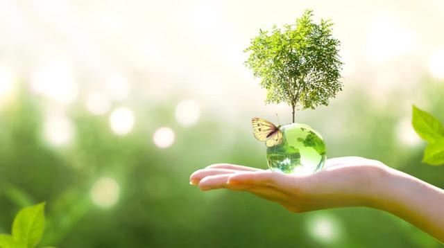 Earth Day 2020 - Día de la Tierra
