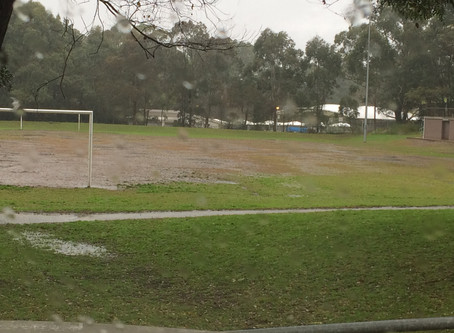 Norman Griffiths Oval Artificial Pitch - UPDATE