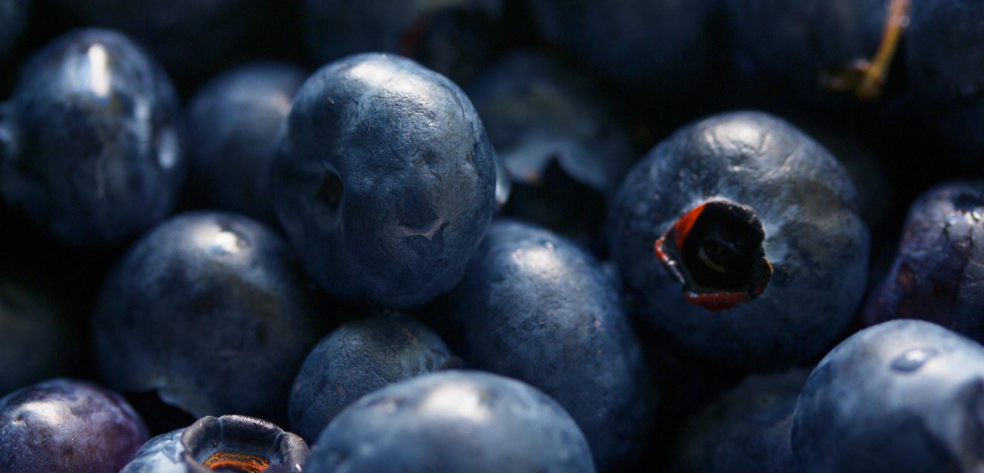 antioxidant-berries-bilberry-139749.jpg