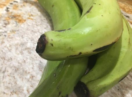 Biomassa da Banana Verde - Poderoso Probiótico que Alimenta a Flora Intestinal Benéfica