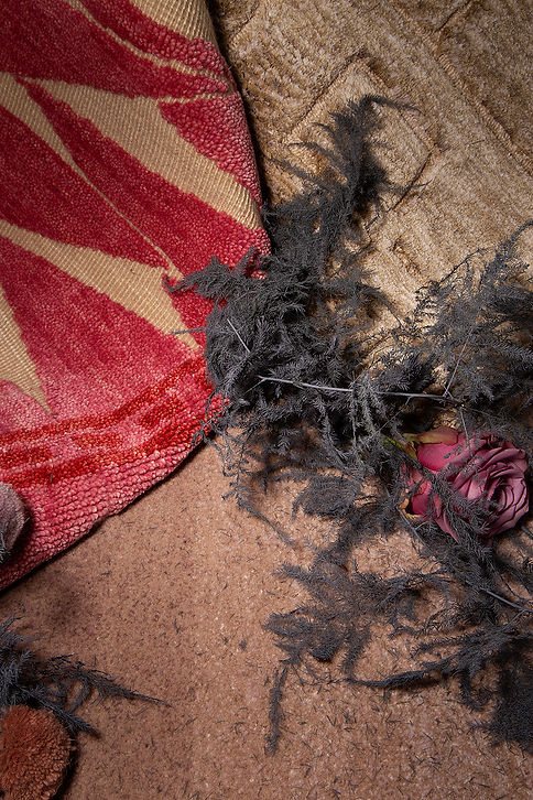 retorra rugs