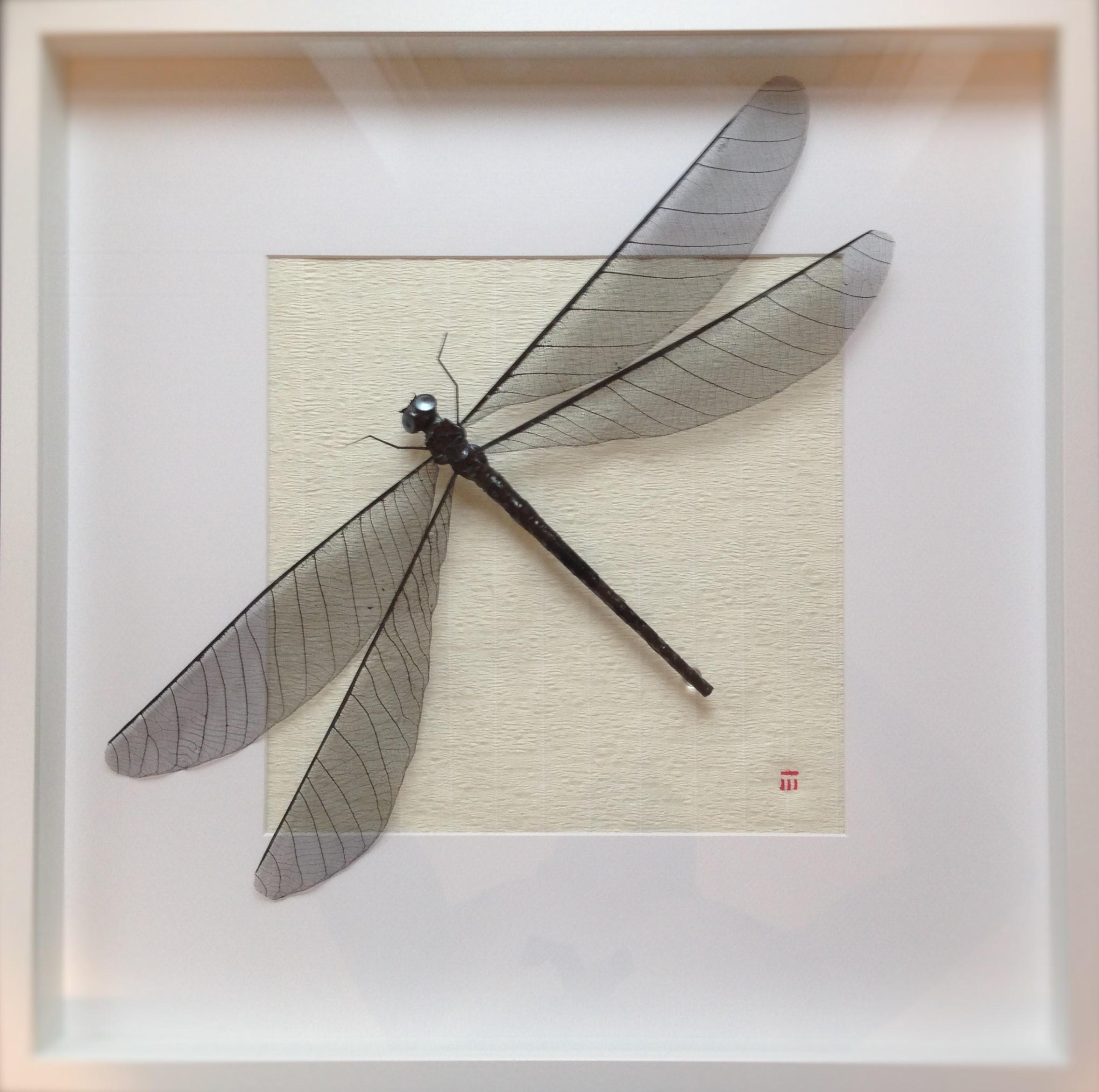 sumi-ink-dragonfly-black-artwork (2)
