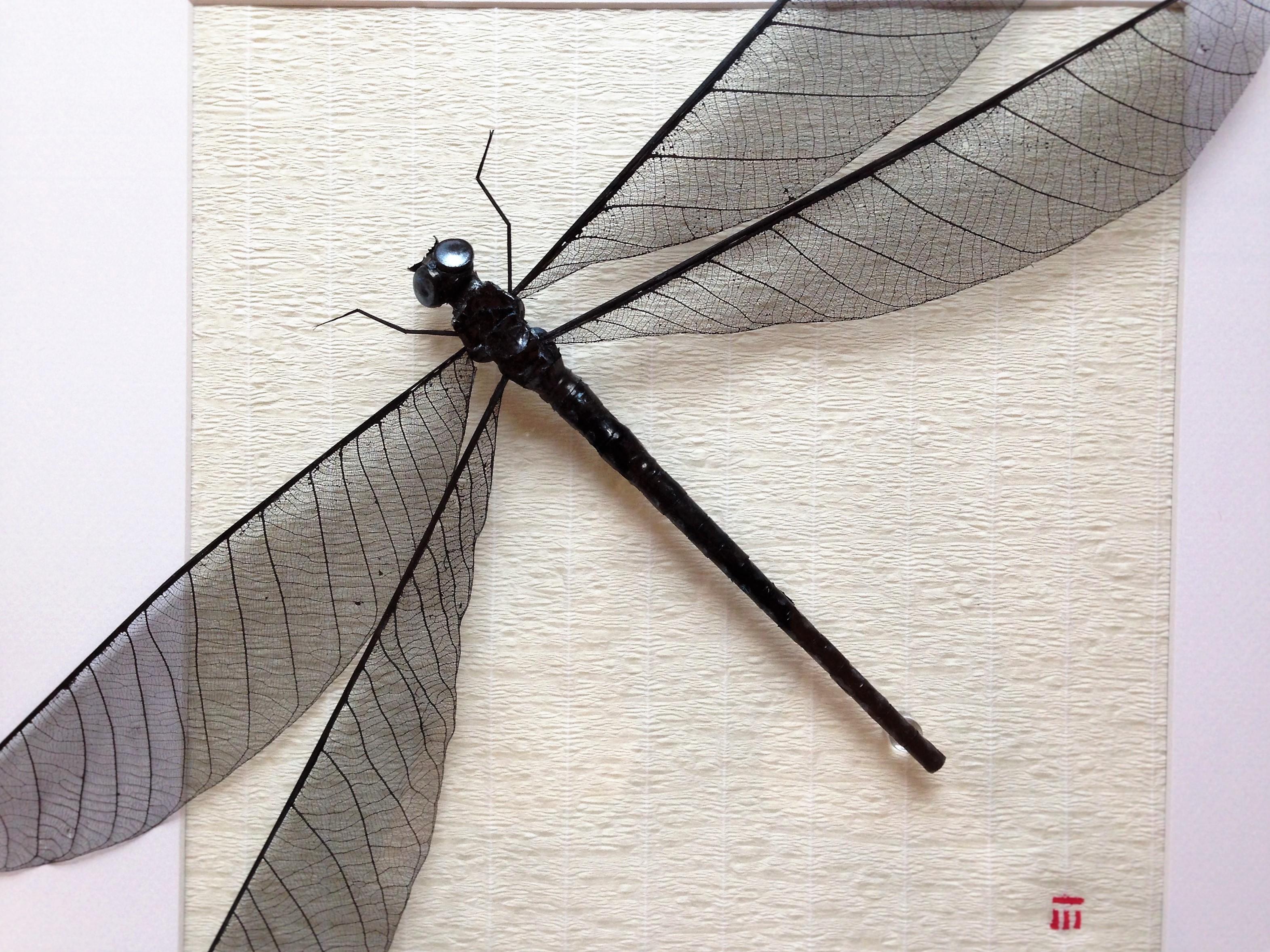 sumi-ink-black-dragonfly-artwork
