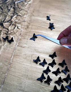 Idol butterflies making