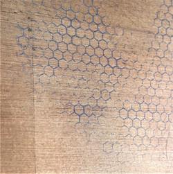 Hexagonal cells
