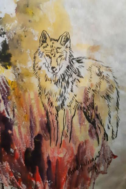 Susi / Wolf