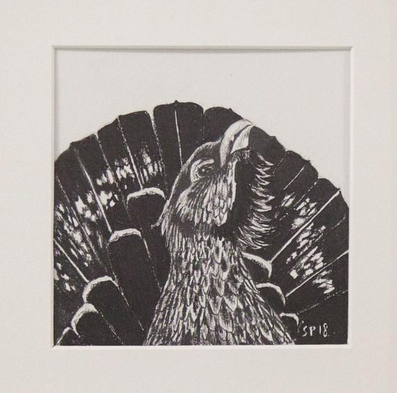 Metso / Wood grouse