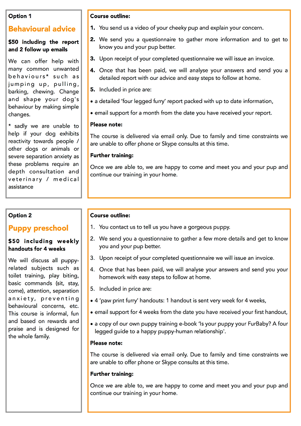 Online course outline 2.png