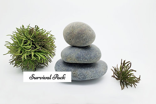 My Zen: Survival