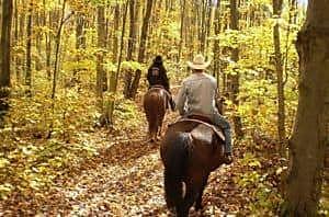 horse back .jpg