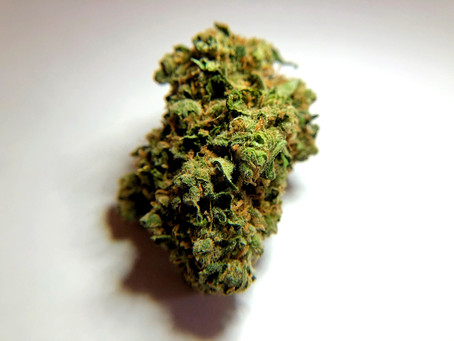 Durban Poison - What do you know about it?