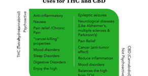 Medical & Recreational  Uses for THC and CBD