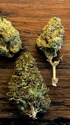 6 Tips and tricks to finding the right weed for you
