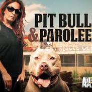 9. Pit Bulls & Parolees.jpg
