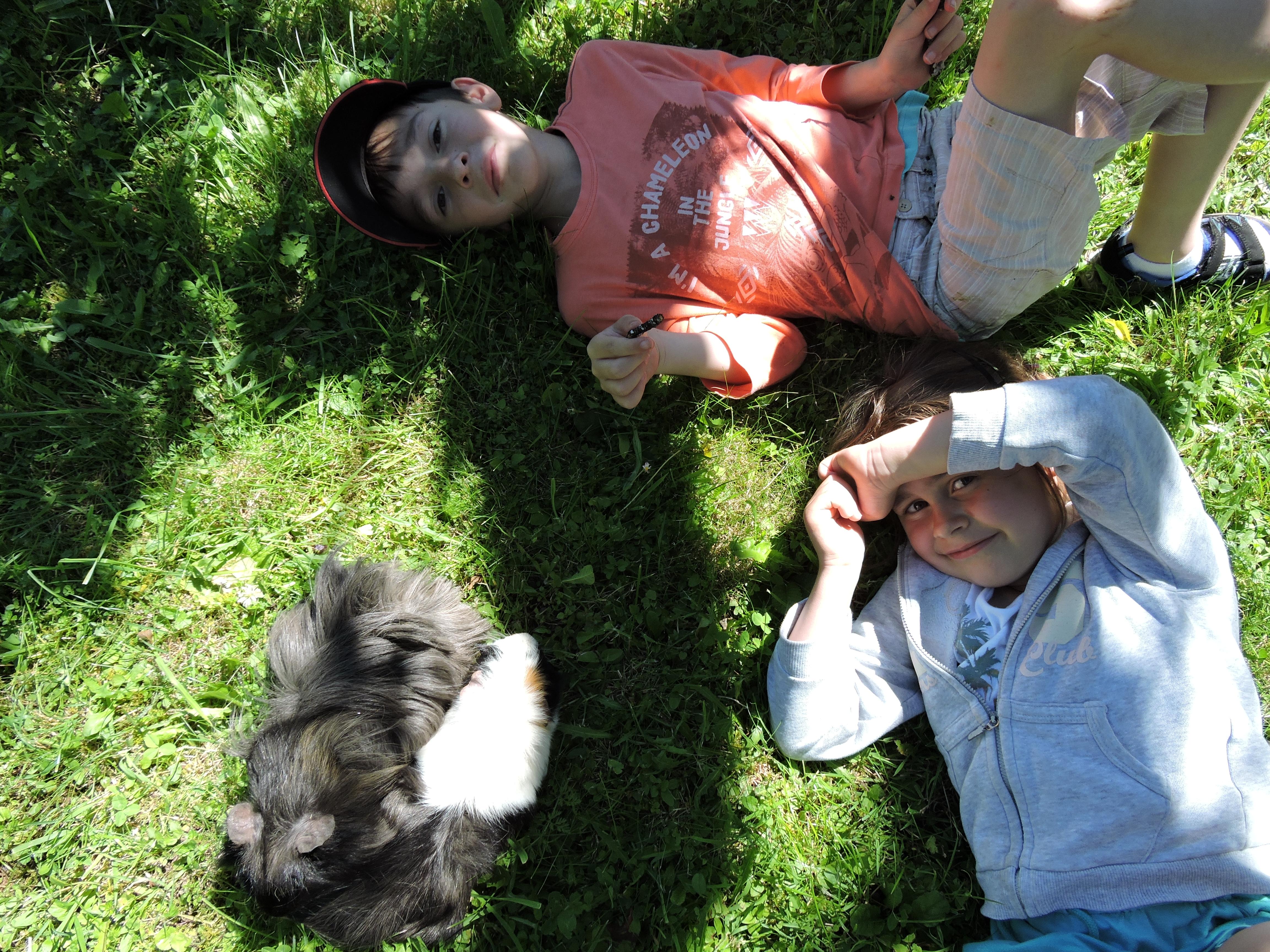 Régis, Lou et les animaux d'Amidoux
