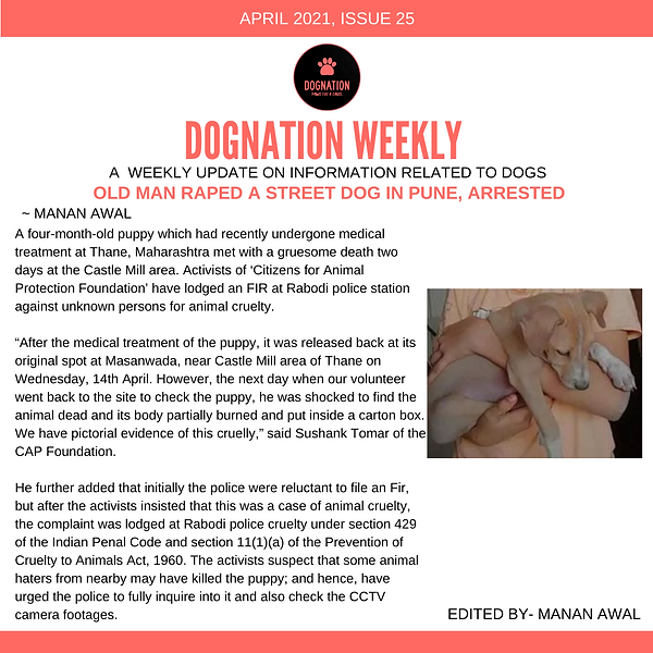 DOGNATION WEEKLY-5.png
