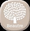beautre_BI.png