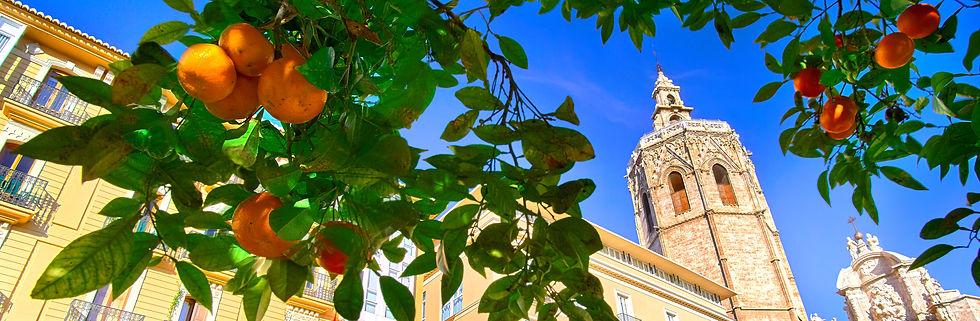 Cathedral crop.jpg
