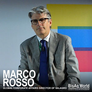 Marco Rosso