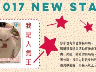 2017白貓人氣王揭曉