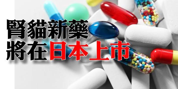 腎貓新藥,將在日本上市!