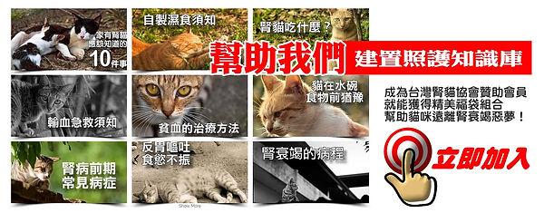 助腎貓★送福袋|台灣腎貓協會
