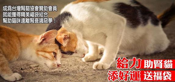台灣腎貓協會|助腎貓★送福袋
