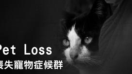 喪失寵物症候群 Pet Loss