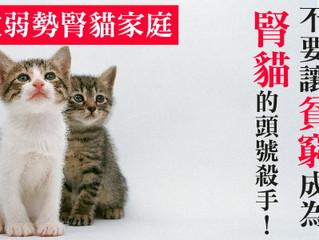 不要讓貧窮成為  腎貓的頭號殺手!